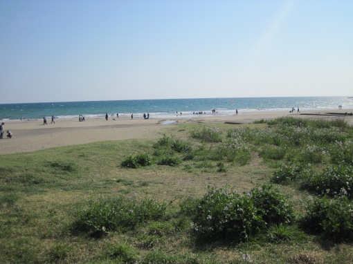 Strand in Kamakura