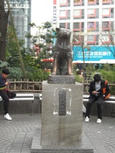 Hachiko - ein beliebter Treffpunkt. Nur Touristen machen Fotos mit ihm