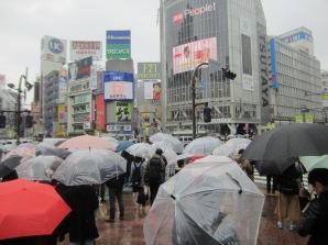 Regenschirmwald bei der weltberühmten Shibuya-Kreuzung