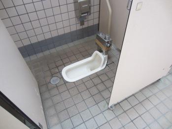 die Grusel-Toiletten