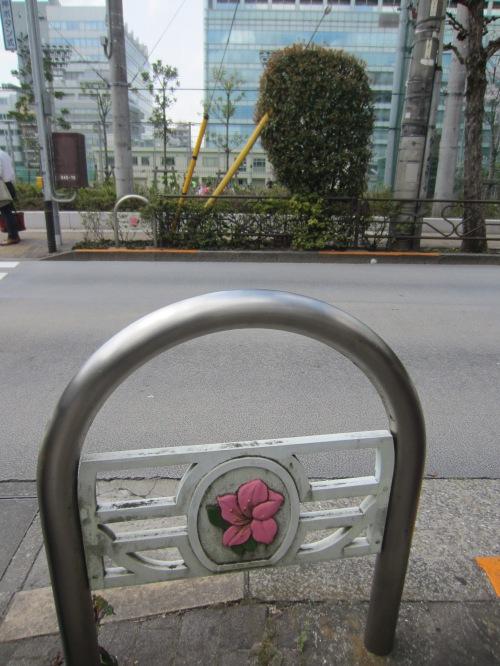 die Kirschblüte ist für die Japaner sehr wichtig